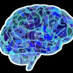 нейронаука